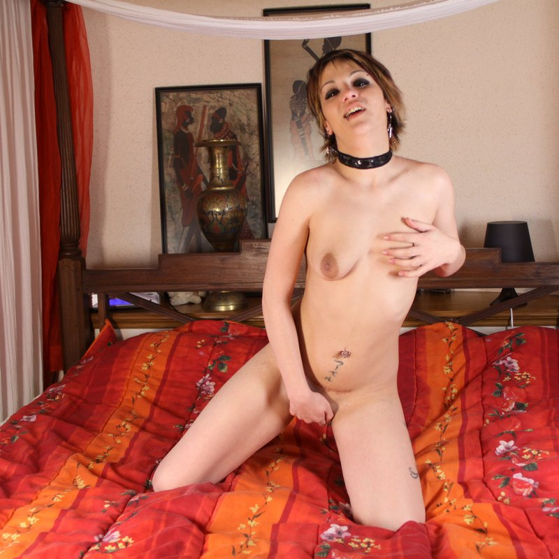 Chat coquin salopes Rena Bollene